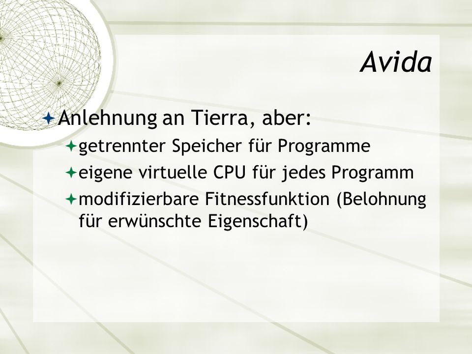 Avida Anlehnung an Tierra, aber: getrennter Speicher für Programme eigene virtuelle CPU für jedes Programm modifizierbare Fitnessfunktion (Belohnung f