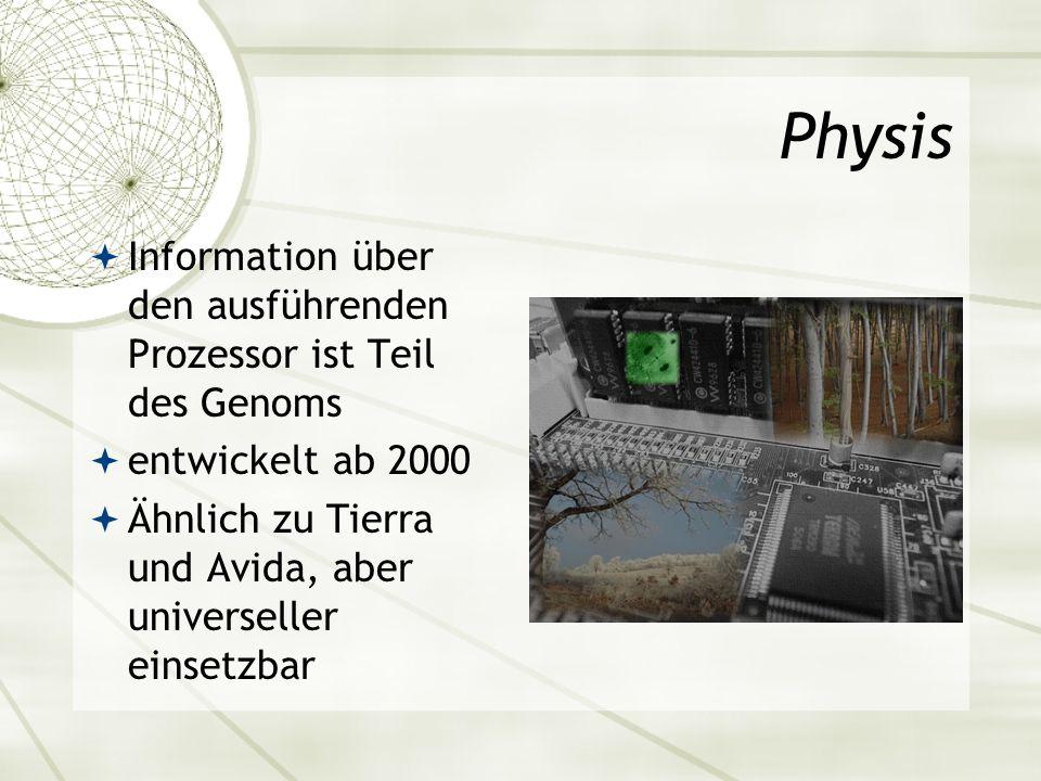 Information über den ausführenden Prozessor ist Teil des Genoms entwickelt ab 2000 Ähnlich zu Tierra und Avida, aber universeller einsetzbar