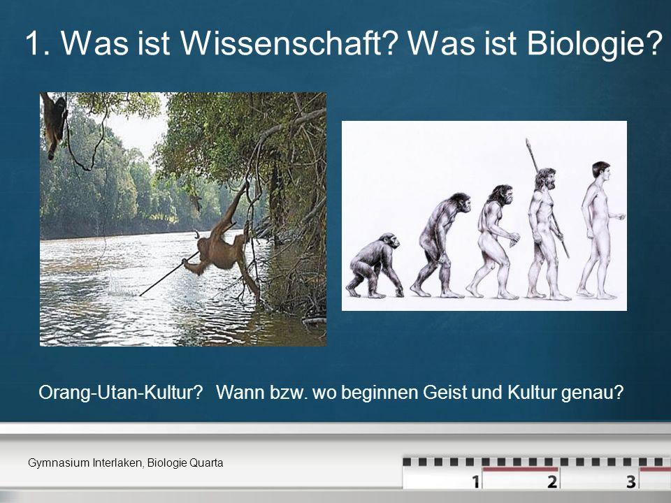 1. Was ist Wissenschaft? Was ist Biologie? Gymnasium Interlaken, Biologie Quarta Orang-Utan-Kultur? Wann bzw. wo beginnen Geist und Kultur genau?