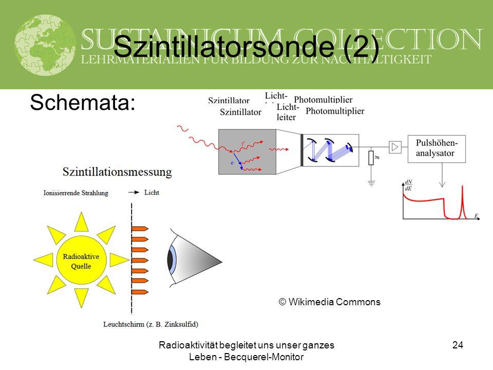 Radioaktivität begleitet uns unser ganzes Leben - Becquerel-Monitor 24 Szintillatorsonde (2) Schemata: © Wikimedia Commons