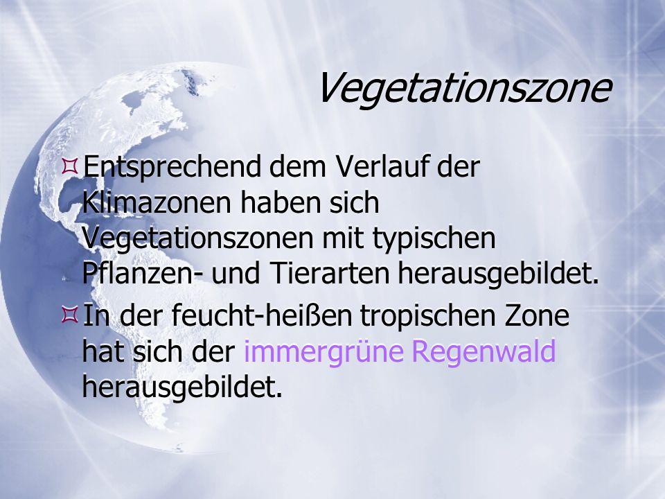 Vegetationszone Entsprechend dem Verlauf der Klimazonen haben sich Vegetationszonen mit typischen Pflanzen- und Tierarten herausgebildet. In der feuch