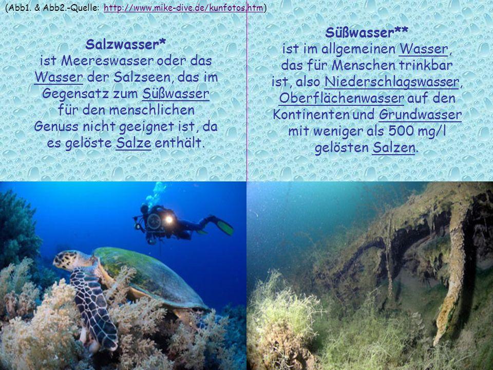 Salzwasser* ist Meereswasser oder das Wasser der Salzseen, das im Gegensatz zum Süßwasser für den menschlichen Genuss nicht geeignet ist, da es gelöst