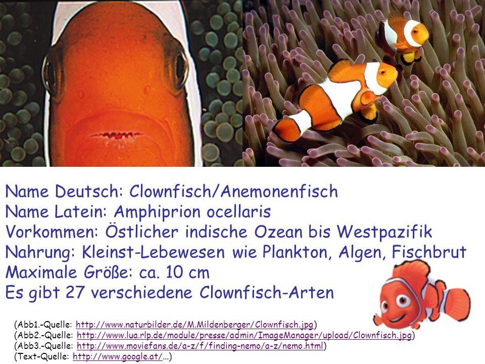 (Abb1.-Quelle: http://www.naturbilder.de/M.Mildenberger/Clownfisch.jpg)http://www.naturbilder.de/M.Mildenberger/Clownfisch.jpg (Abb2.-Quelle: http://w