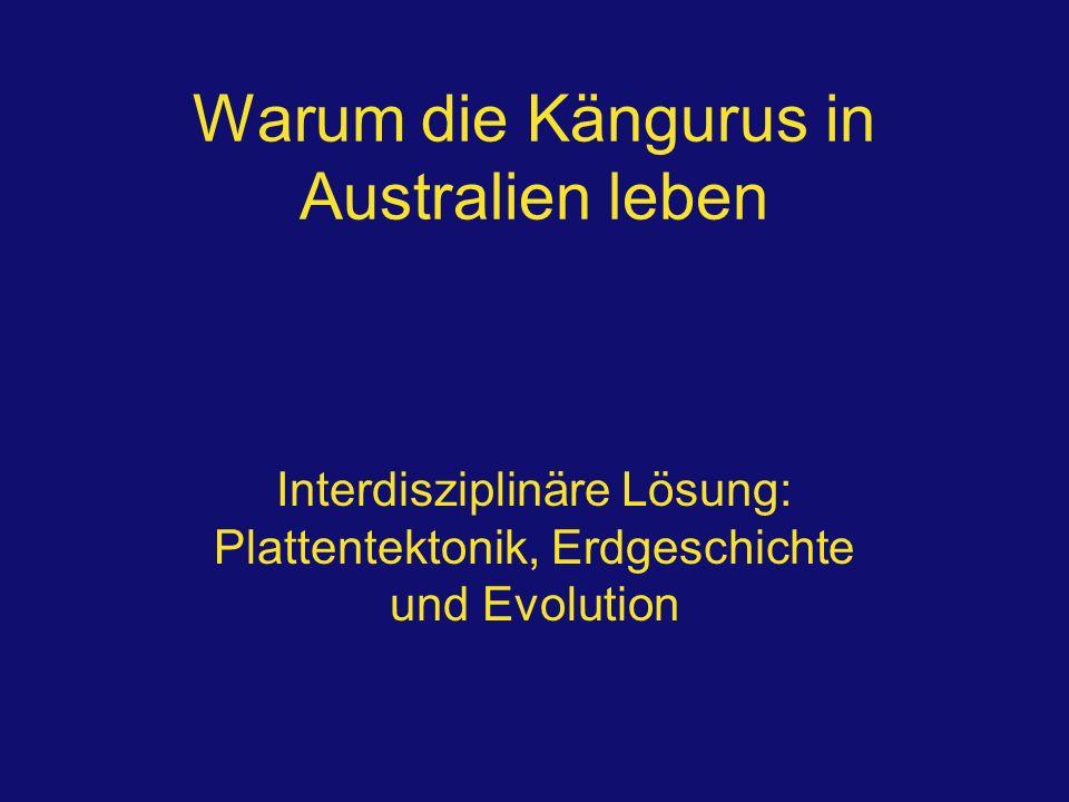Warum die Kängurus in Australien leben Interdisziplinäre Lösung: Plattentektonik, Erdgeschichte und Evolution