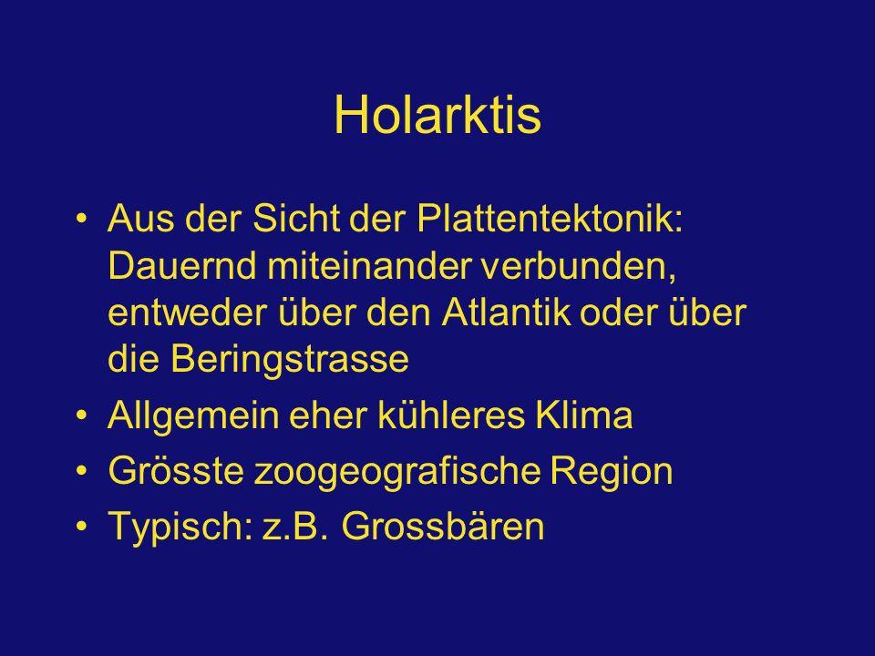 Holarktis Aus der Sicht der Plattentektonik: Dauernd miteinander verbunden, entweder über den Atlantik oder über die Beringstrasse Allgemein eher kühl