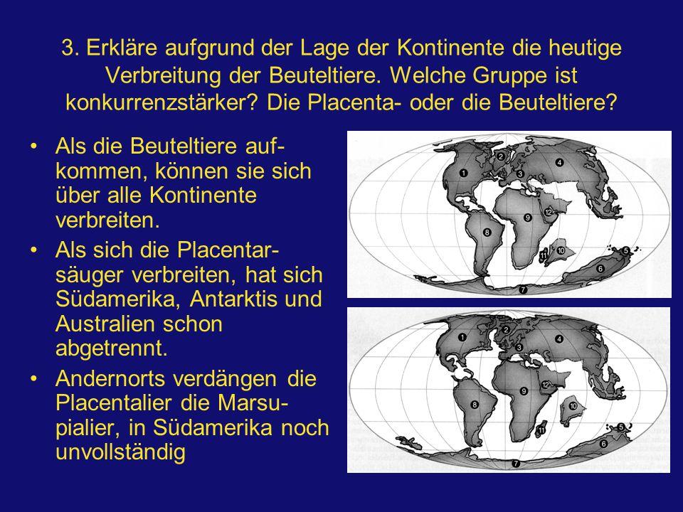 3. Erkläre aufgrund der Lage der Kontinente die heutige Verbreitung der Beuteltiere. Welche Gruppe ist konkurrenzstärker? Die Placenta- oder die Beute