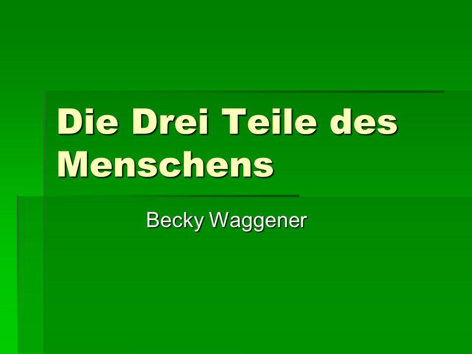 Die Drei Teile des Menschens Becky Waggener