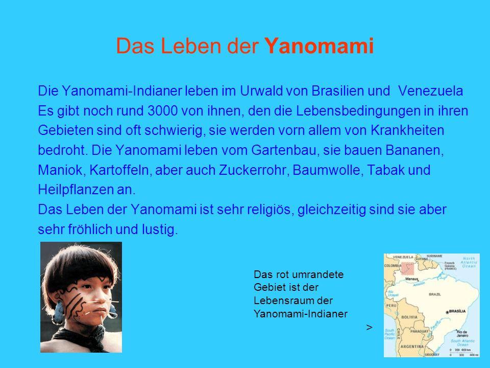 Das Leben der Yanomami Die Yanomami-Indianer leben im Urwald von Brasilien und Venezuela Es gibt noch rund 3000 von ihnen, den die Lebensbedingungen i