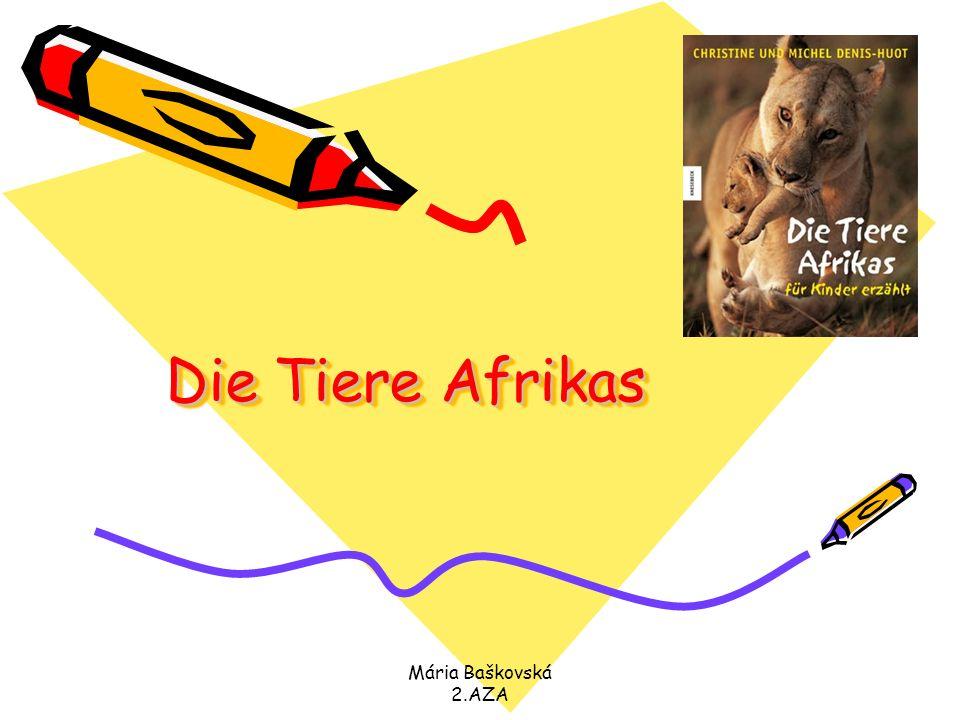 Mária Baškovská 2.AZA Die Tiere Afrikas