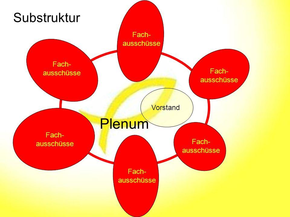Substruktur Plenum Vorstand Fach- ausschüsse