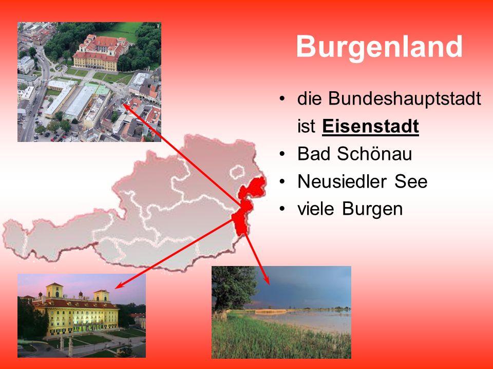 Burgenland die Bundeshauptstadt ist Eisenstadt Bad Schönau Neusiedler See viele Burgen