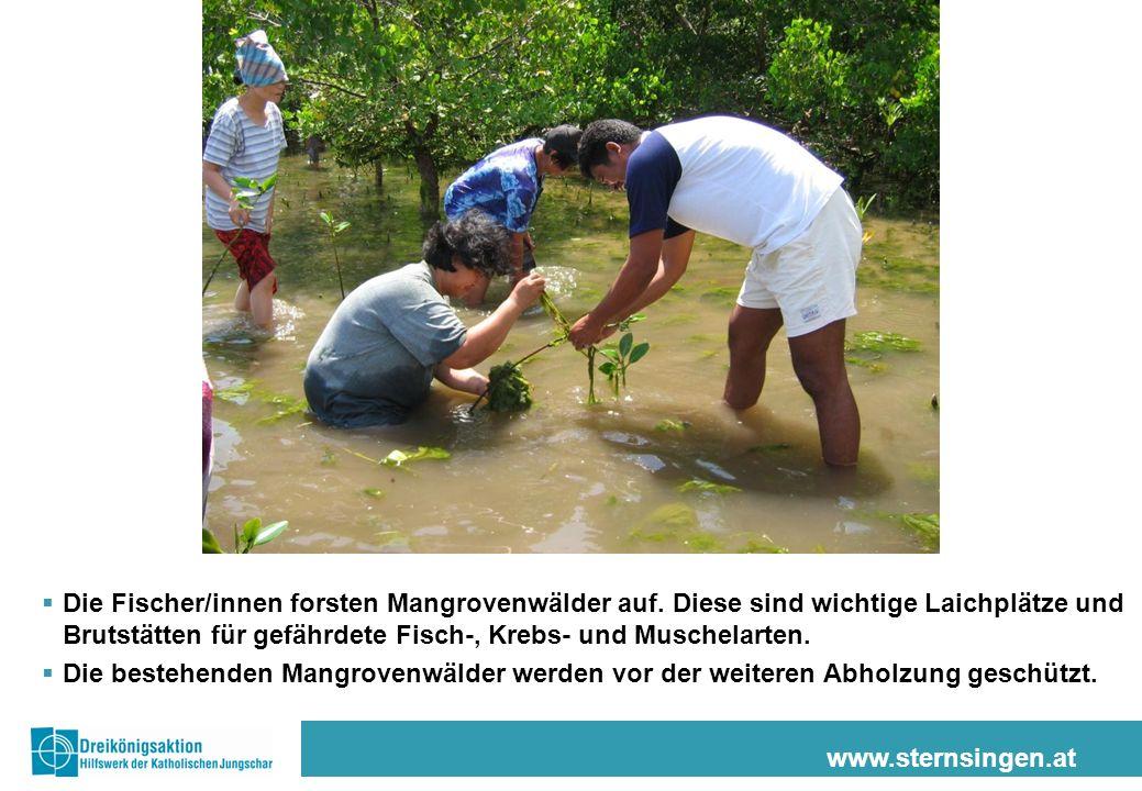 www.sternsingen.at Die Fischer/innen forsten Mangrovenwälder auf. Diese sind wichtige Laichplätze und Brutstätten für gefährdete Fisch-, Krebs- und Mu