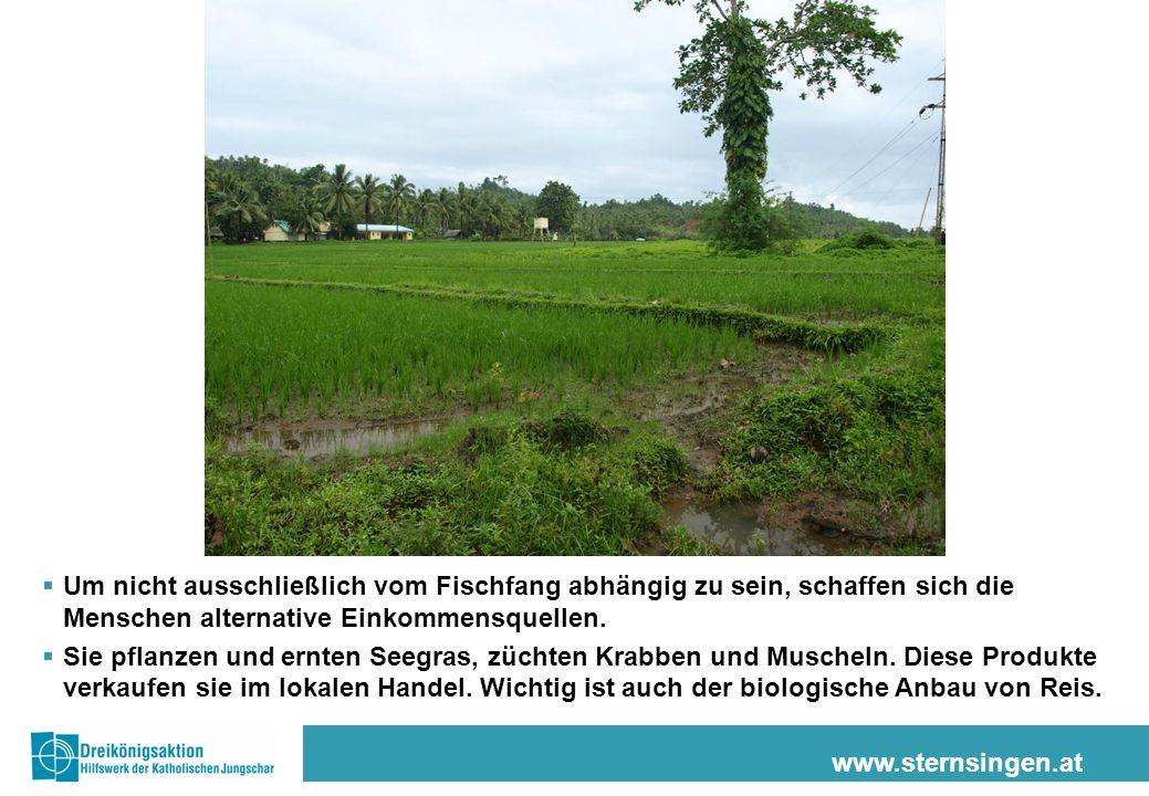 www.sternsingen.at Um nicht ausschließlich vom Fischfang abhängig zu sein, schaffen sich die Menschen alternative Einkommensquellen. Sie pflanzen und
