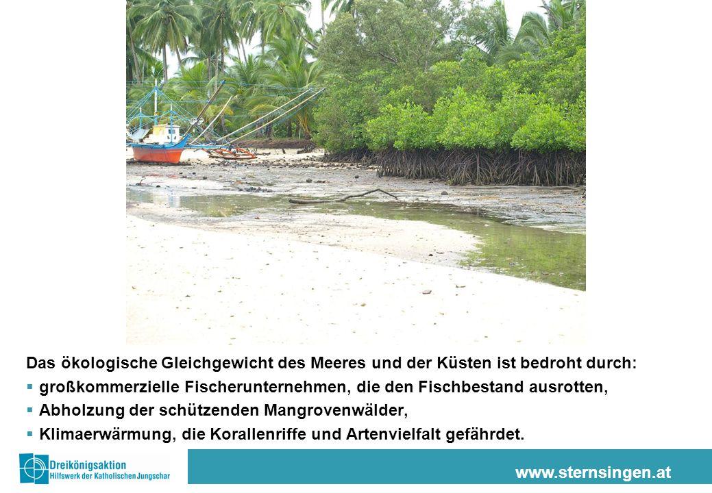 www.sternsingen.at Das ökologische Gleichgewicht des Meeres und der Küsten ist bedroht durch: großkommerzielle Fischerunternehmen, die den Fischbestan