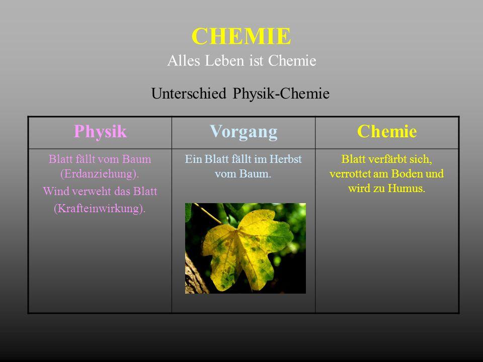 CHEMIE Alles Leben ist Chemie Unterschied Physik-Chemie PhysikVorgangChemie Blatt fällt vom Baum (Erdanziehung). Wind verweht das Blatt (Krafteinwirku