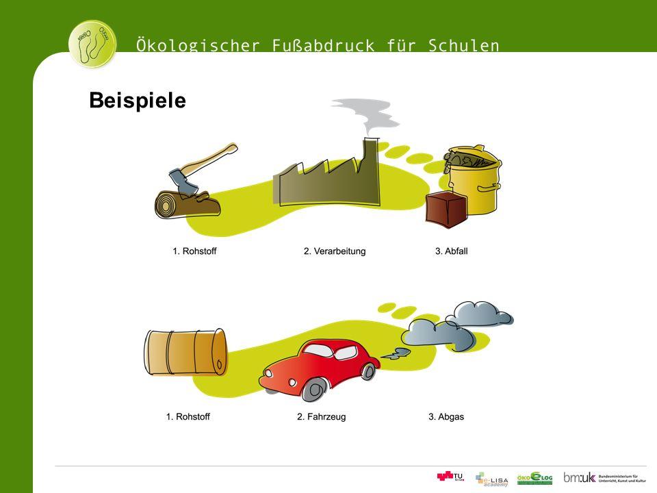 11Ökologischer Fußabdrucksrechner für Schulen Beispiele