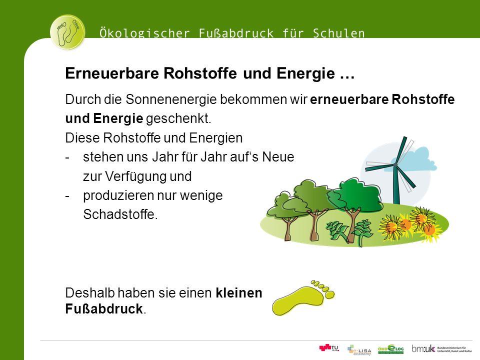 11Ökologischer Fußabdrucksrechner für Schulen Erneuerbare Rohstoffe und Energie … Durch die Sonnenenergie bekommen wir erneuerbare Rohstoffe und Energ