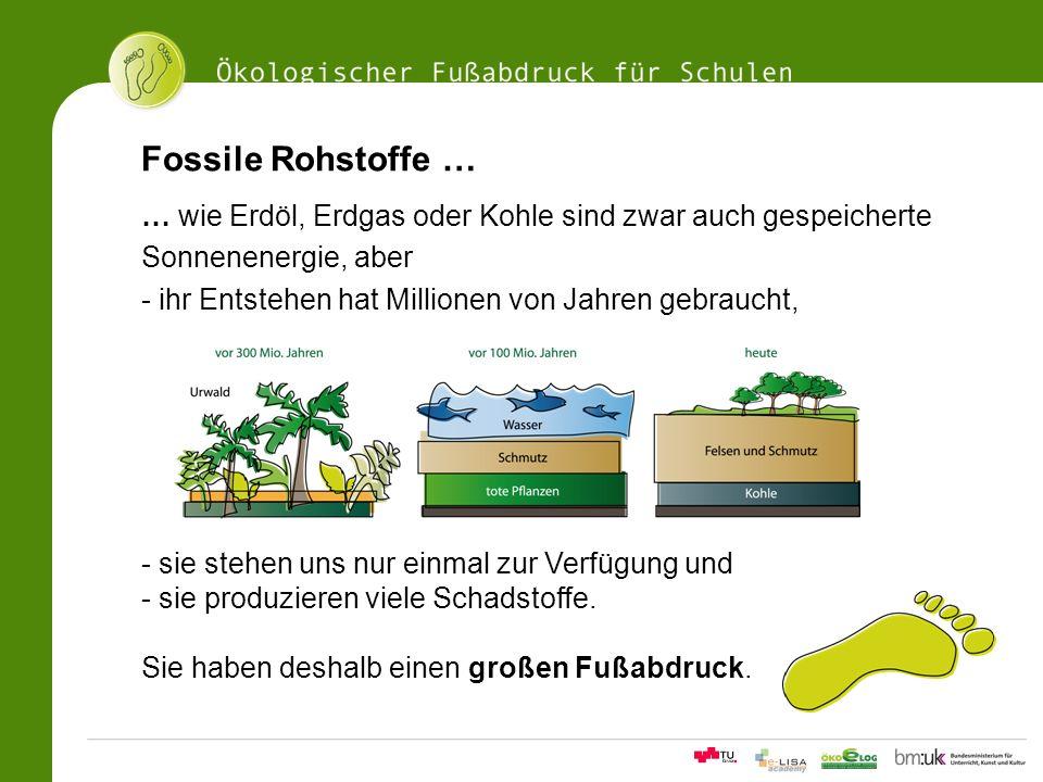 11Ökologischer Fußabdrucksrechner für Schulen Fossile Rohstoffe … … wie Erdöl, Erdgas oder Kohle sind zwar auch gespeicherte Sonnenenergie, aber - ihr