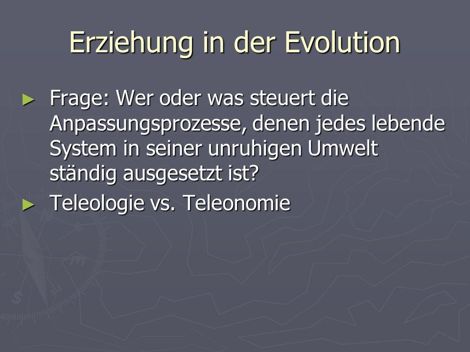 Erziehung in der Evolution Frage: Wer oder was steuert die Anpassungsprozesse, denen jedes lebende System in seiner unruhigen Umwelt ständig ausgesetzt ist.