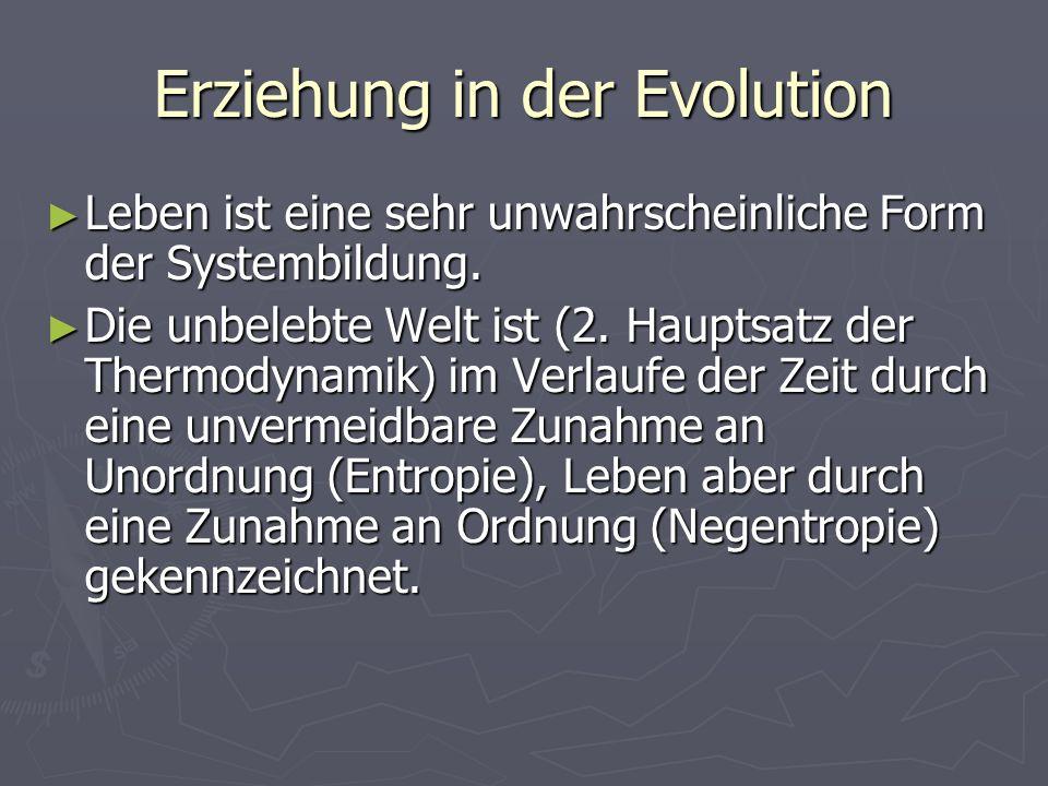 Erziehung in der Evolution Leben ist eine sehr unwahrscheinliche Form der Systembildung. Leben ist eine sehr unwahrscheinliche Form der Systembildung.
