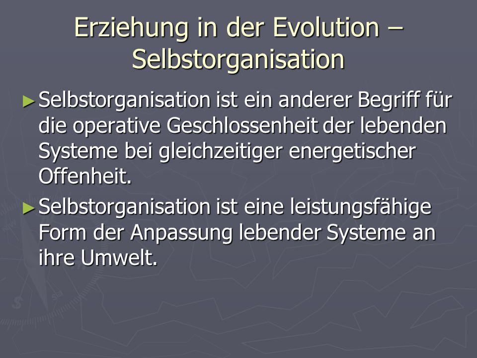 Erziehung in der Evolution – Selbstorganisation Selbstorganisation ist ein anderer Begriff für die operative Geschlossenheit der lebenden Systeme bei gleichzeitiger energetischer Offenheit.