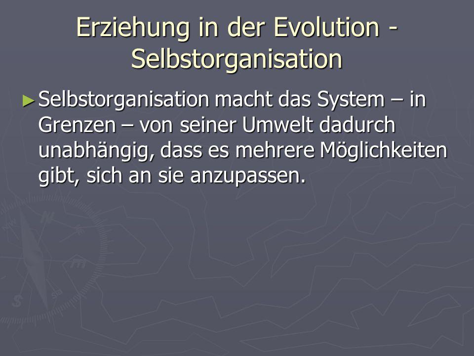 Erziehung in der Evolution - Selbstorganisation Selbstorganisation macht das System – in Grenzen – von seiner Umwelt dadurch unabhängig, dass es mehrere Möglichkeiten gibt, sich an sie anzupassen.