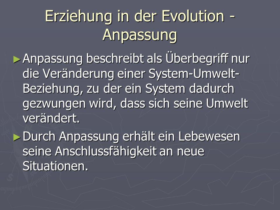 Erziehung in der Evolution - Anpassung Anpassung beschreibt als Überbegriff nur die Veränderung einer System-Umwelt- Beziehung, zu der ein System dadurch gezwungen wird, dass sich seine Umwelt verändert.