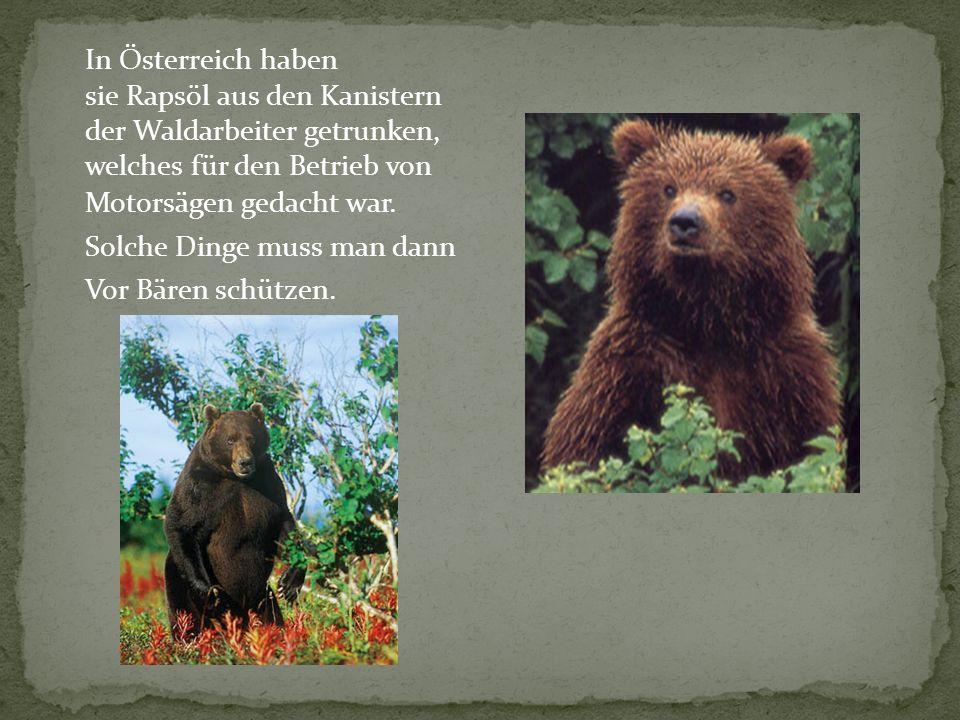 Motorsägen gedacht war. Solche Dinge muss man dann Vor Bären schützen. In Österreich haben sie Rapsöl aus den Kanistern der Waldarbeiter getrunken, we