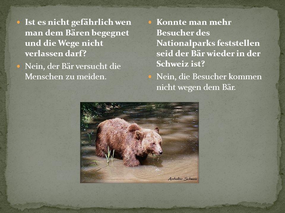 Ist es nicht gefährlich wen man dem Bären begegnet und die Wege nicht verlassen darf? Nein, der Bär versucht die Menschen zu meiden. Konnte man mehr B