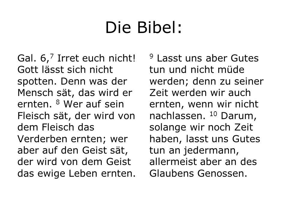 Die Bibel: Gal. 6, 7 Irret euch nicht! Gott lässt sich nicht spotten. Denn was der Mensch sät, das wird er ernten. 8 Wer auf sein Fleisch sät, der wir