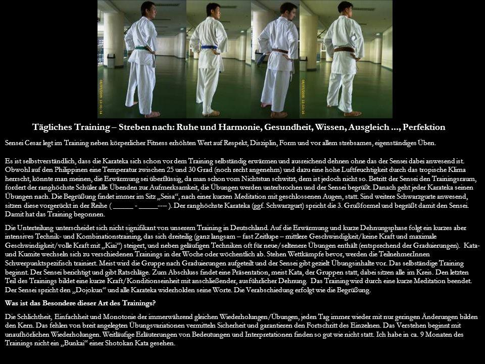 Tägliches Training – Streben nach: Ruhe und Harmonie, Gesundheit, Wissen, Ausgleich..., Perfektion Sensei Cesar legt im Training neben körperlicher Fi