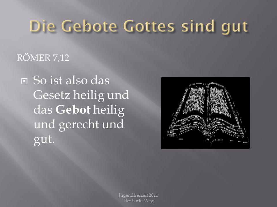 RÖMER 7,12 So ist also das Gesetz heilig und das Gebot heilig und gerecht und gut. Jugendfreizeit 2011 Der harte Weg