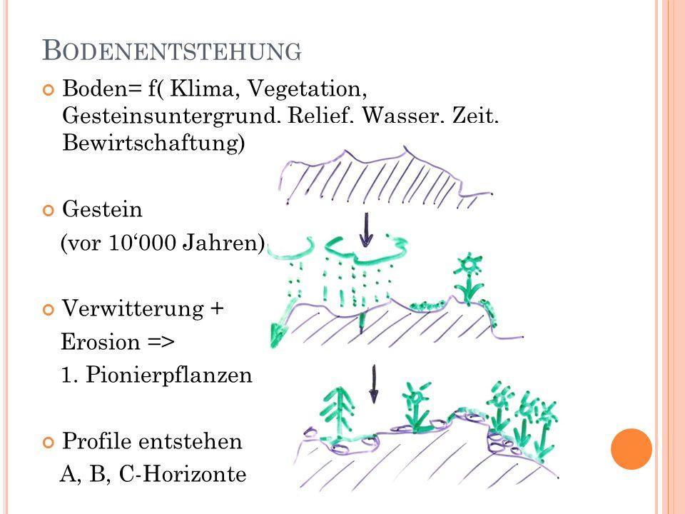 B ODENENTSTEHUNG Boden= f( Klima, Vegetation, Gesteinsuntergrund, Relief, Wasser, Zeit, Bewirtschaftung) Gestein (vor 10000 Jahren) Verwitterung + Ero