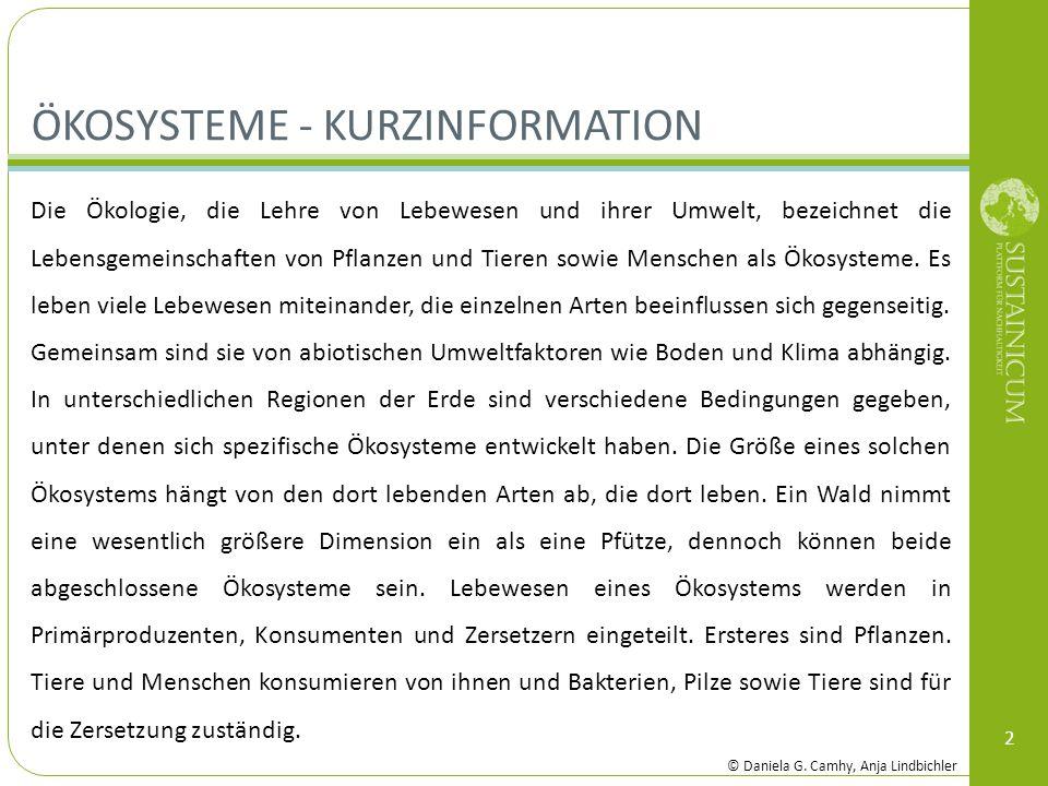 ÖKOSYSTEME - KURZINFORMATION 2 Die Ökologie, die Lehre von Lebewesen und ihrer Umwelt, bezeichnet die Lebensgemeinschaften von Pflanzen und Tieren sow
