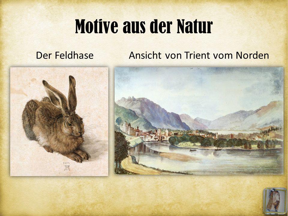 Motive aus der Natur Ansicht von Trient vom NordenDer Feldhase