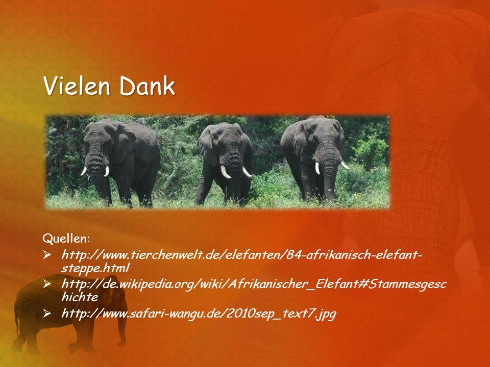 Vielen Dank Quellen: http://www.tierchenwelt.de/elefanten/84-afrikanisch-elefant- steppe.html http://de.wikipedia.org/wiki/Afrikanischer_Elefant#Stamm