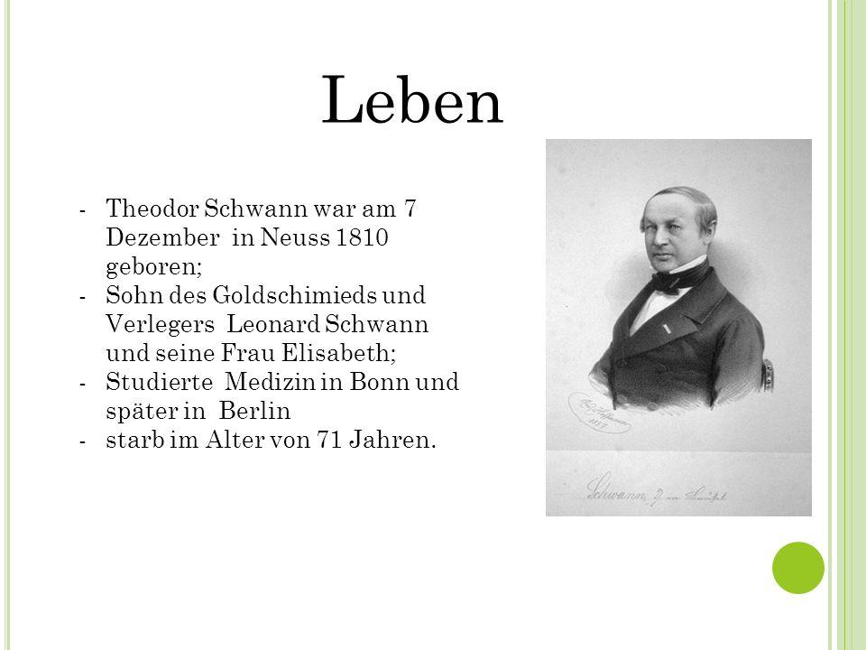 Leben -Theodor Schwann war am 7 Dezember in Neuss 1810 geboren; -Sohn des Goldschimieds und Verlegers Leonard Schwann und seine Frau Elisabeth; -Studi