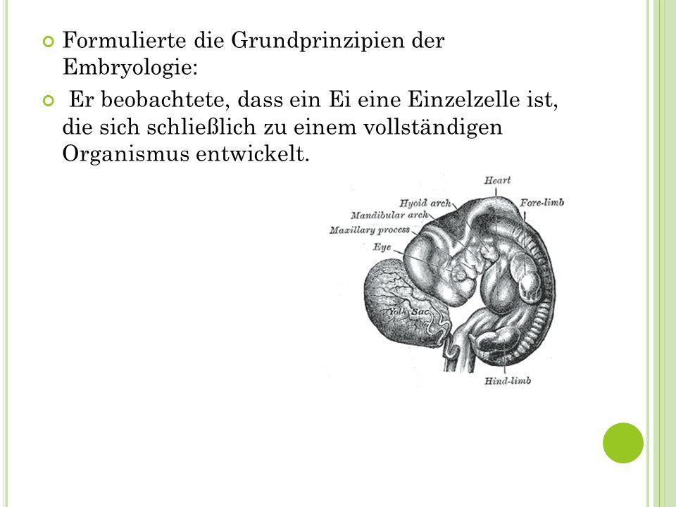 Formulierte die Grundprinzipien der Embryologie: Er beobachtete, dass ein Ei eine Einzelzelle ist, die sich schließlich zu einem vollständigen Organis