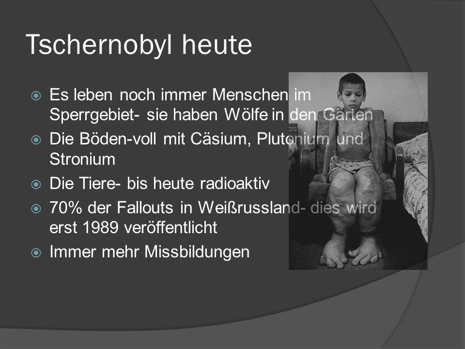 Tschernobyl heute Es leben noch immer Menschen im Sperrgebiet- sie haben Wölfe in den Gärten Die Böden-voll mit Cäsium, Plutonium und Stronium Die Tie