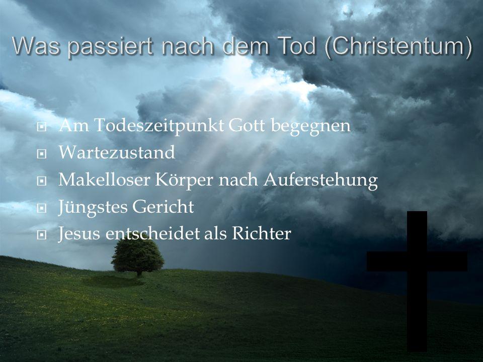 Am Todeszeitpunkt Gott begegnen Wartezustand Makelloser Körper nach Auferstehung Jüngstes Gericht Jesus entscheidet als Richter