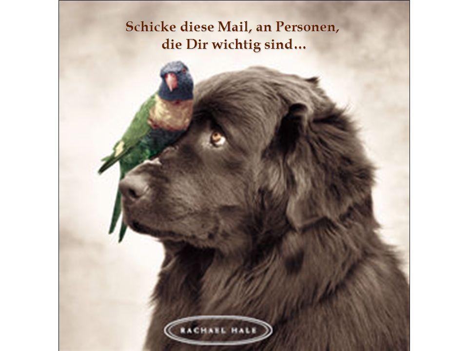 Schicke diese Mail, an Personen, die Dir wichtig sind…