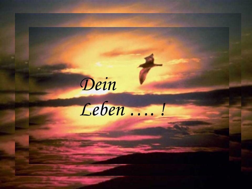 Dein Leben …. !
