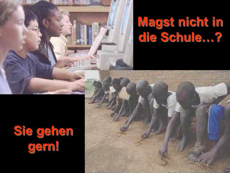 © by www.pro-leben.de Magst nicht in die Schule… Sie gehen gern!