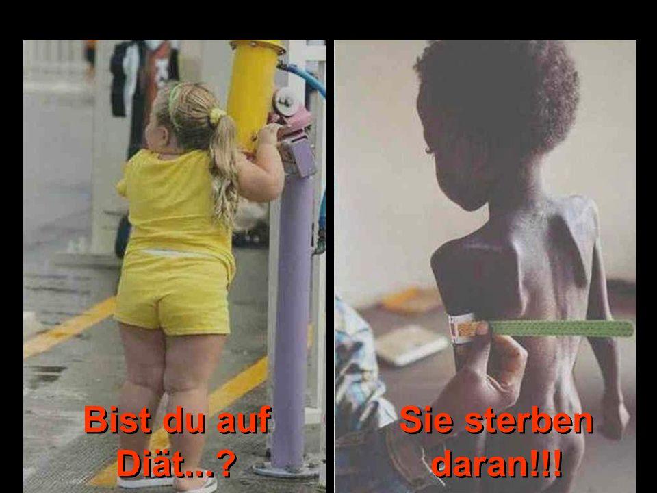 © by www.pro-leben.de Bist du auf Diät... Sie sterben daran!!!