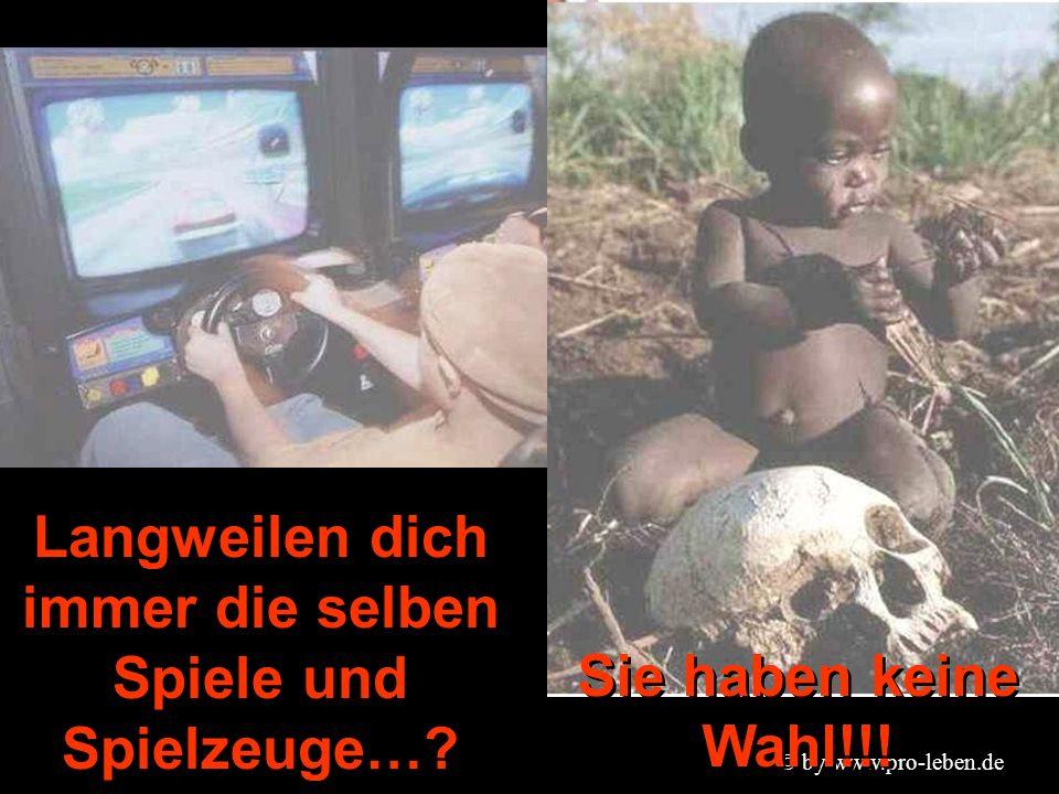 © by www.pro-leben.de Langweilen dich immer die selben Spiele und Spielzeuge….