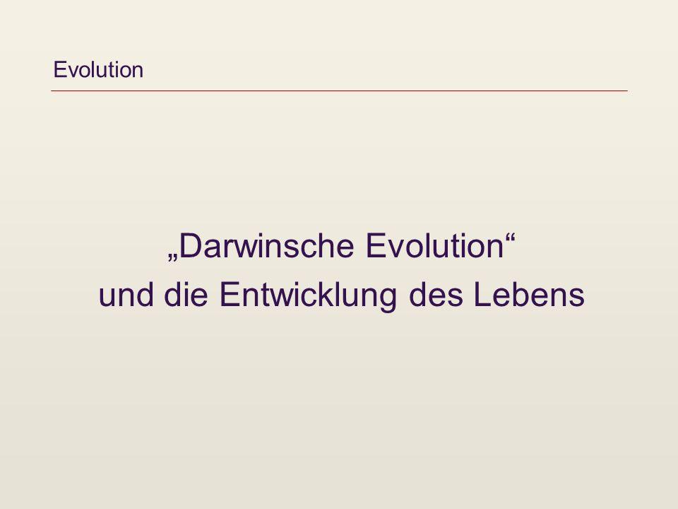 Evolution Darwinsche Evolution und die Entwicklung des Lebens