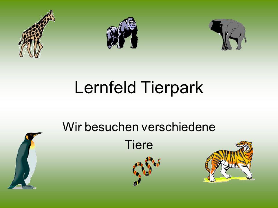 Lernfeld Tierpark Wir besuchen verschiedene Tiere