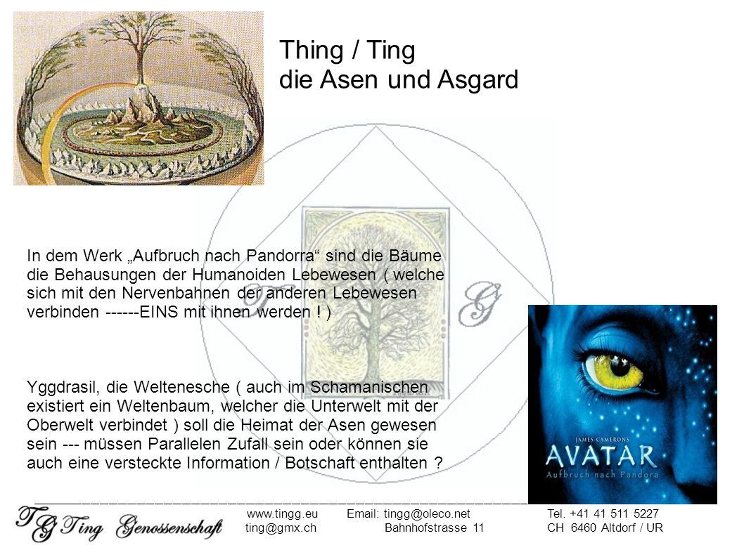 ( III ) Ausblick - unser Ziel, unsere Lösung Asgard Ohne Rückbesinnung auf unseren Ursprung haben wir keine Zukunft in Freiheit.