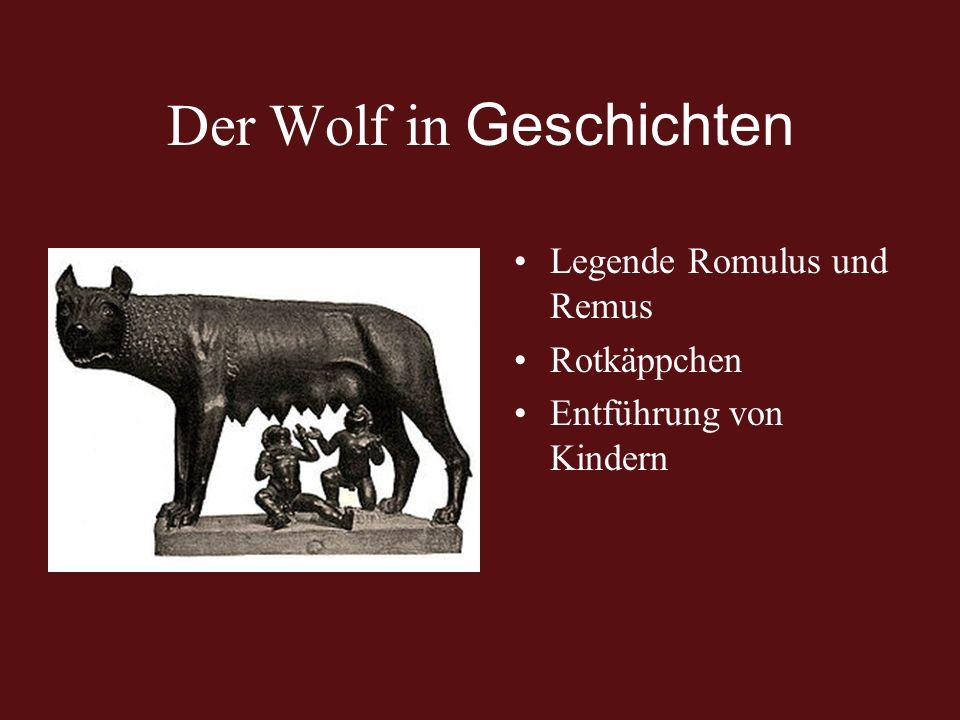 Der Wolf in Geschichten Legende Romulus und Remus Rotkäppchen Entführung von Kindern