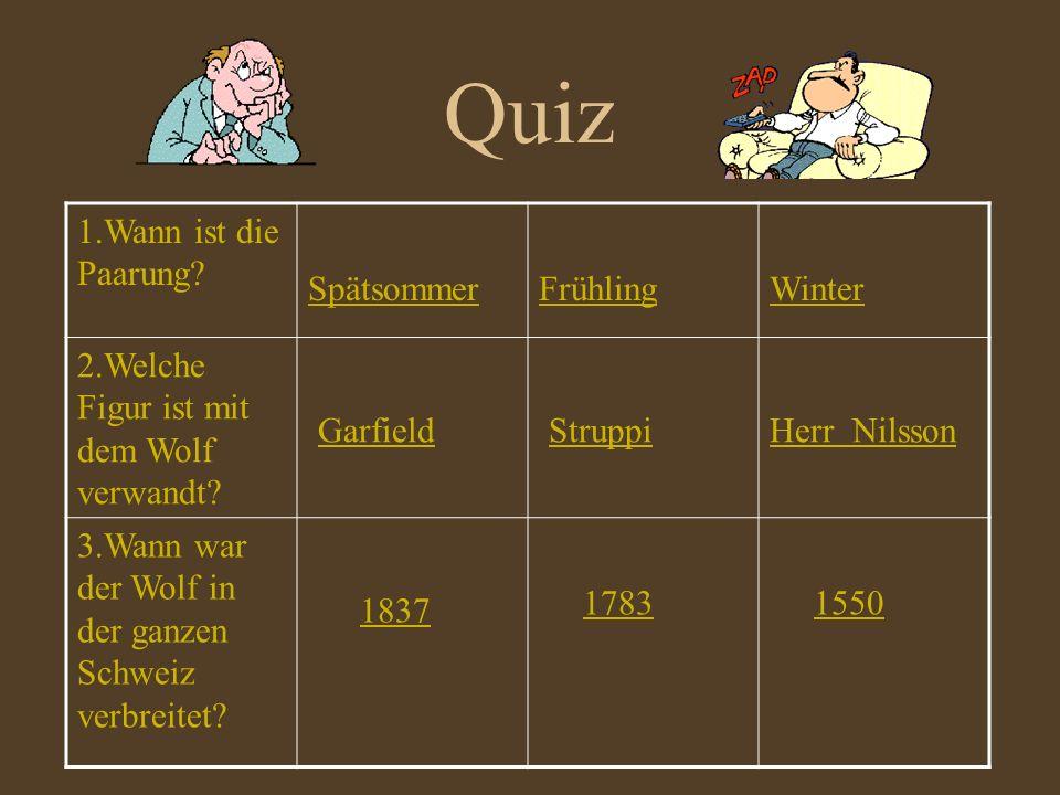 Quiz 1.Wann ist die Paarung? SpätsommerFrühlingWinter 2.Welche Figur ist mit dem Wolf verwandt? Garfield Struppi Herr Nilsson 3.Wann war der Wolf in d